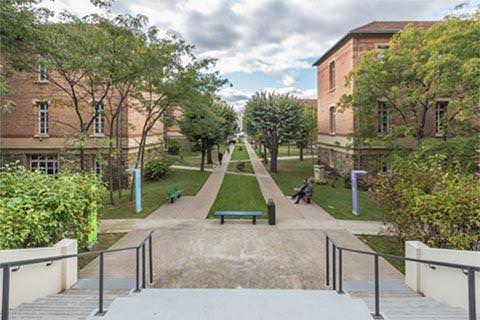 Campus La Web School